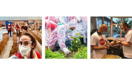 エデンレッド、従業員が「アイディアル・デイ(Ideal day)」に地域コミュニティでの社会貢献活動を実施